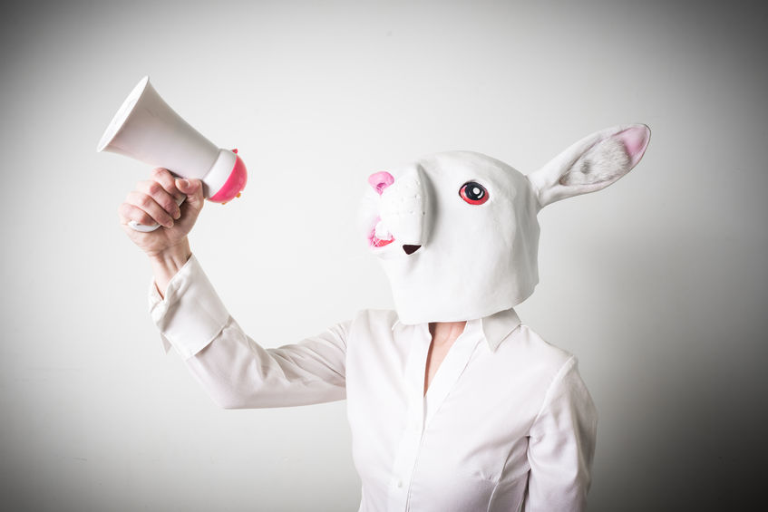 What The Velveteen Rabbit Can Teach You About Leadership